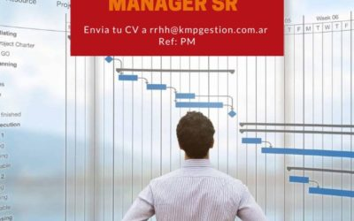 Project Manager Sr
